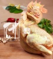 Thịt gà - Trứng gà Bologa