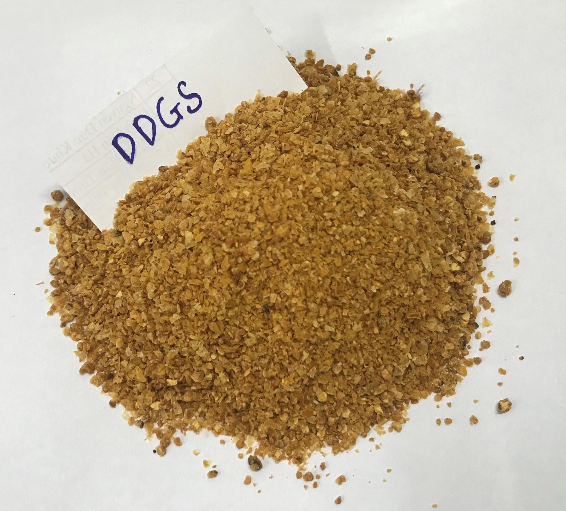 SIMICO Cung cấp DDGS - Nguyên liệu sản xuất Thức ăn chăn nuôi