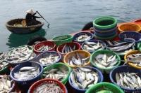Cần mua số lượng lớn thủy hải sản