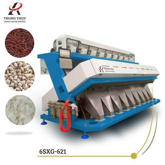 Máy phân loại màu gạo chín máng