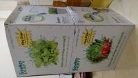 (Combo) 1 bộ thùng trồng thủy canh cho RAU ĂN LÁ HOPTRI GROWBOX LEAFTY KIT 10 + 1 bộ thùng trồng thủy canh cho CÂY ĂN QUẢ HOPTRI GROWBOX FRUITY KIT 10