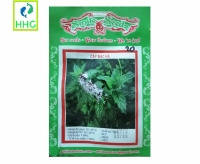 Hạt Giống Cây Bạc Hà Smile Seeds - 100 Hạt