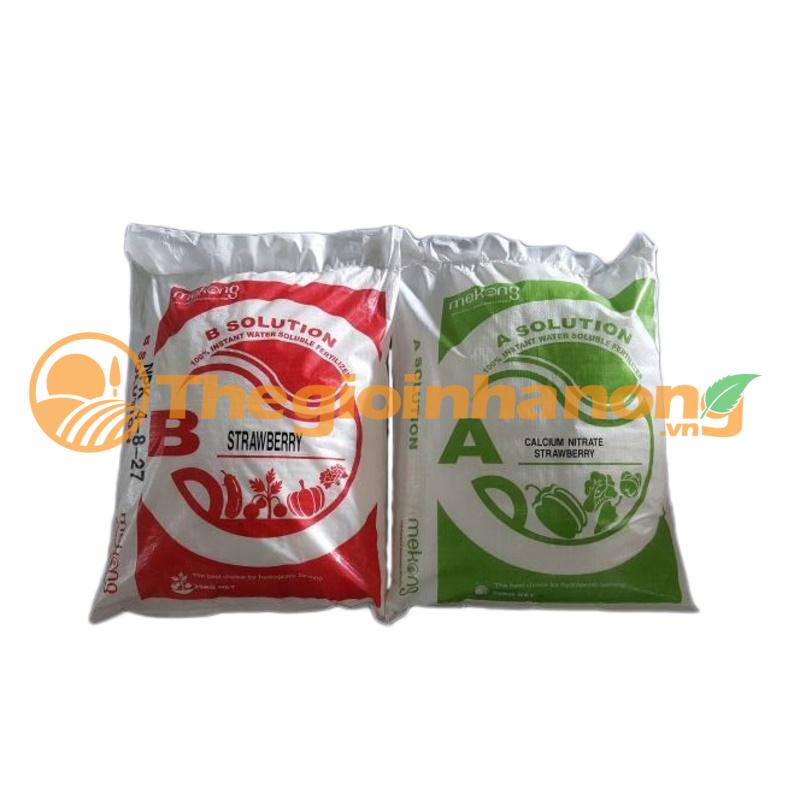 AB Strawberry - Phân bón thủy canh cho dâu tây