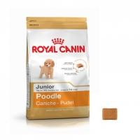 ROYAL CANIN POODLE JUNIOR
