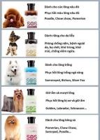 Sữa Tắm cho chó mèo