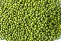 Chuyên xuất nhập khẩu, bán buôn, bán lẻ mộc nhĩ, nấm hương, lạc... và các muwatj hàng nông sản