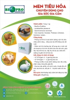 Men vi sinh tiêu hóa sống ngăn bệnh tiêu chảy, phân vàng và giảm hôi chuồng cho lợn, bò, gà