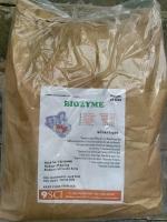 Cung cấp enzyme bổ sung đường ruột