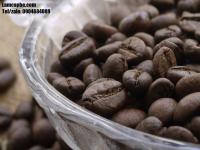 Cà phê Robusta loại 1 cao cấp, cung cấp giá sỉ ưu đãi tại thị trường Bình Dương