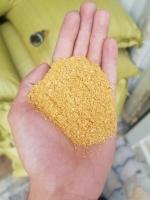 Corn gluten feed - Bột gluten bắp