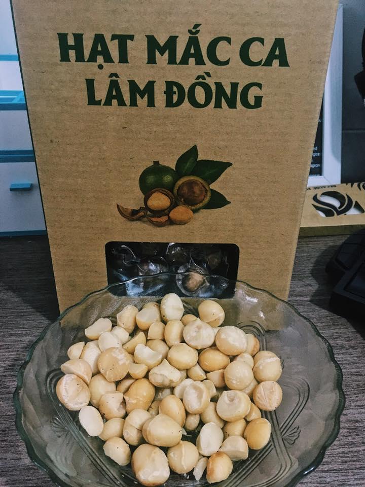 Hạt Mắc Ca Lâm Đồng