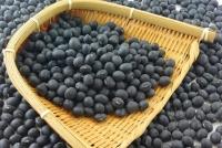 Bột đậu đen Black soybean extract