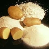 Bột khoai tây Solanum tuberosum extract powder