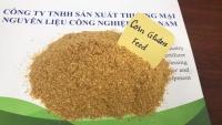 Corn Gluten Feed ( Cám bắp) - Nguyên liệu sản xuất Thức ăn chăn nuôi