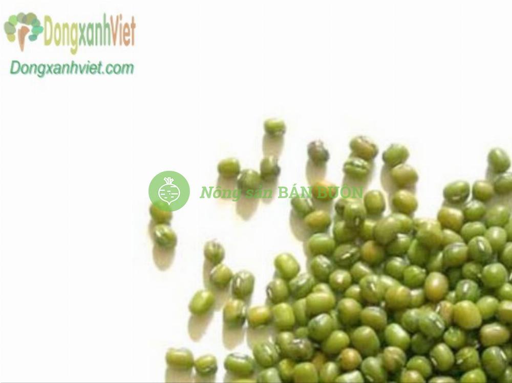Hạt đậu xanh làm giá