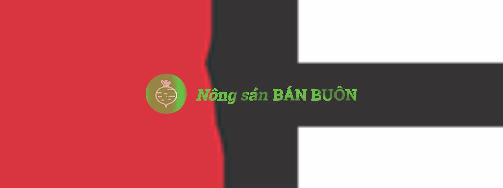 Tổng Công ty Phát triển thị trường Thương mại Năm ngôi sao Việt Nam V-STARS