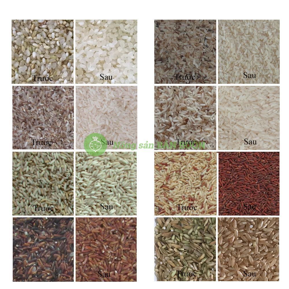 Máy phân loại màu gạo bốn máng