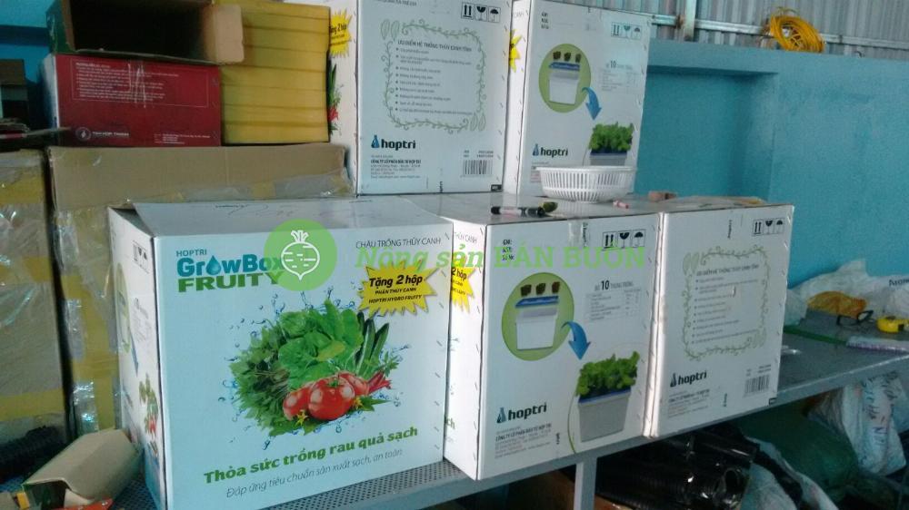 Bộ 10 thùng trồng thủy canh cho cây ĂN QUẢ Hoptri Growbox Fruity Kit 10