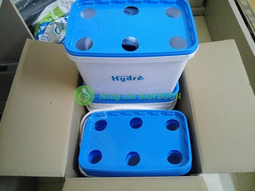 Bộ 10 thùng trồng thủy canh cho RAU ĂN LÁ HOPTRI GROWBOX LEAFTY KIT 10 - TẶNG 2 CẶP HYDRO LEAFY