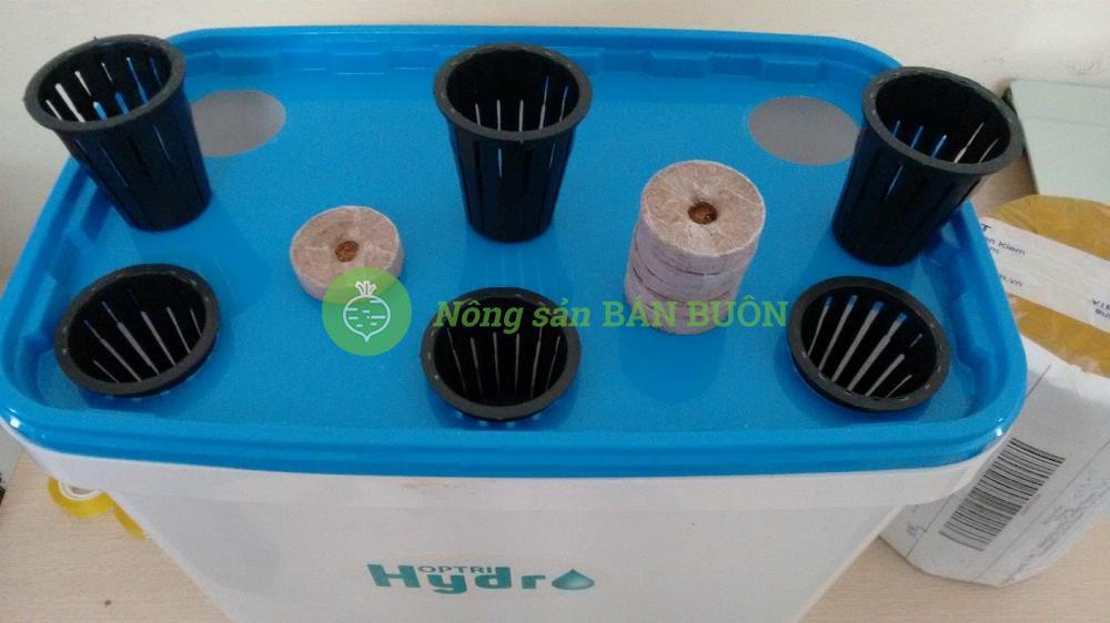 Thùng Trồng Thủy Canh HOPTRI GROWBOX LEAFTY Cho Rau Ăn Lá