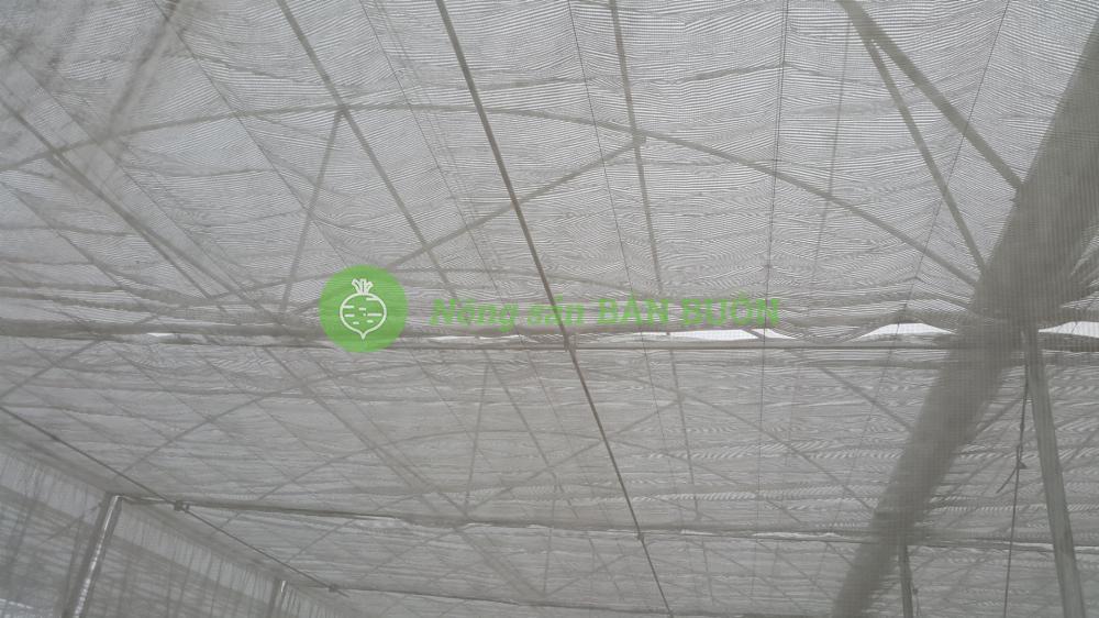 Bán buôn lưới chống côn trùng 40 mesh, chất lượng tốt - giá ưu đãi