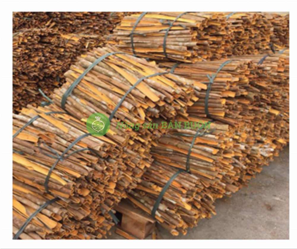 Cinnamon for Export from Vietnam to Foreign Countries