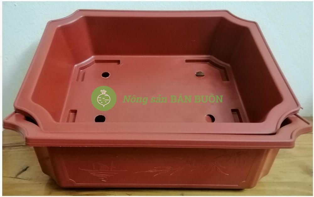 2 Chậu Nhựa Trồng Cây KT: 450x320x110 Hình Chữ Nhật Màu Nâu Siêu Đẹp - Sản Xuất Bởi NHỰA BÌNH THUẬN