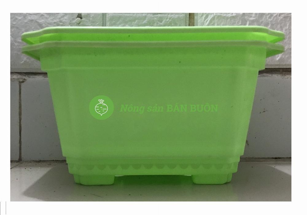 2 Chậu Nhựa Trồng Cây Mini Hình Chữ Nhật Màu Xanh Kích Thước  22x18x12Cm