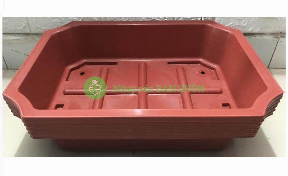 3 Khay Nhựa Bình Thuận, Kích Thước 500x350x120 - Màu Nâu