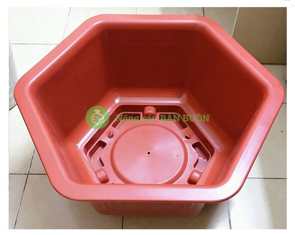 Chậu Nhựa Trồng Hoa, Cây Cảnh Đức Minh FAC-580