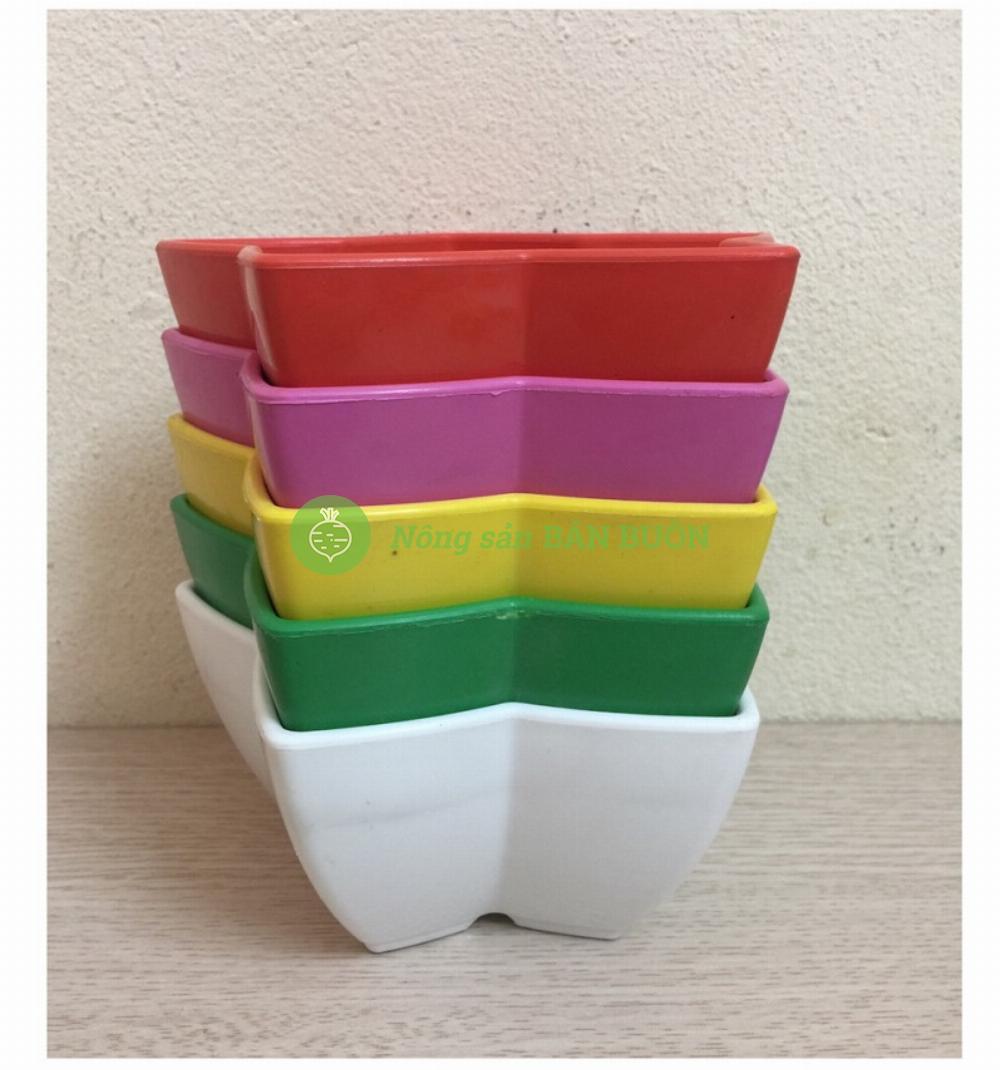 Com Bo 5 Chậu Nhựa Trồng Cây Mini Hình Ngôi Sao Kích Thước 12x12Cm