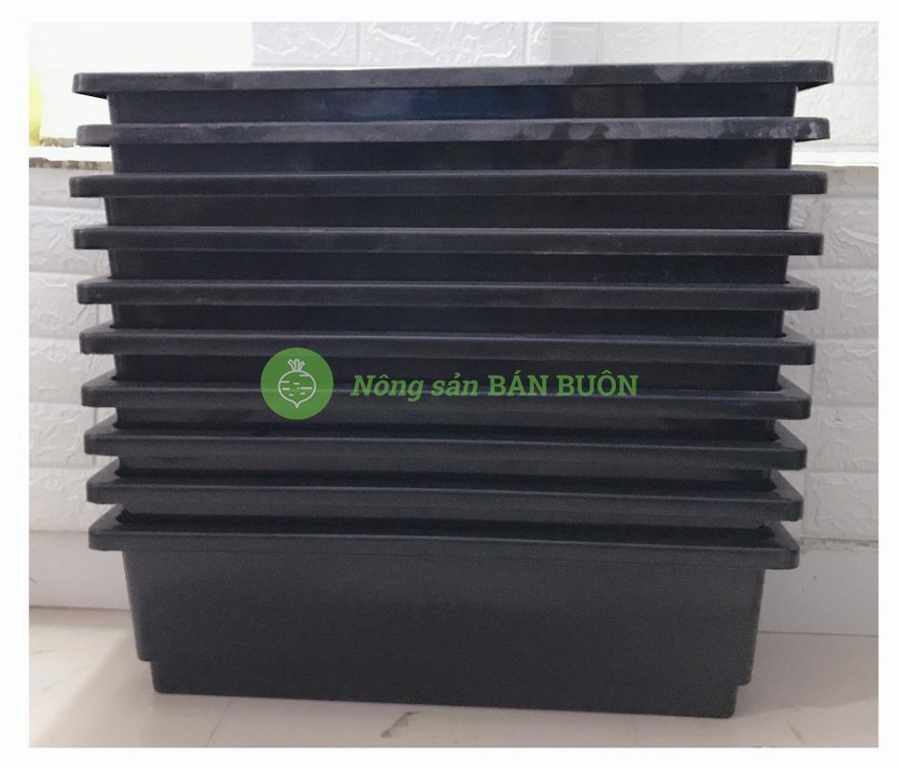 10 Chậu/ Khay/ Máng Nhựa  KT 67X24X19Cm - Màu Đen Trồng Rau, Trồng Hoa, Cây Cảnh